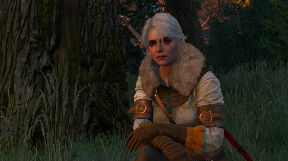 Новый мод The Witcher 3 добавляет интересный сюжетный квест